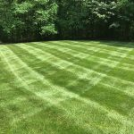 Mowed lawn with stripes