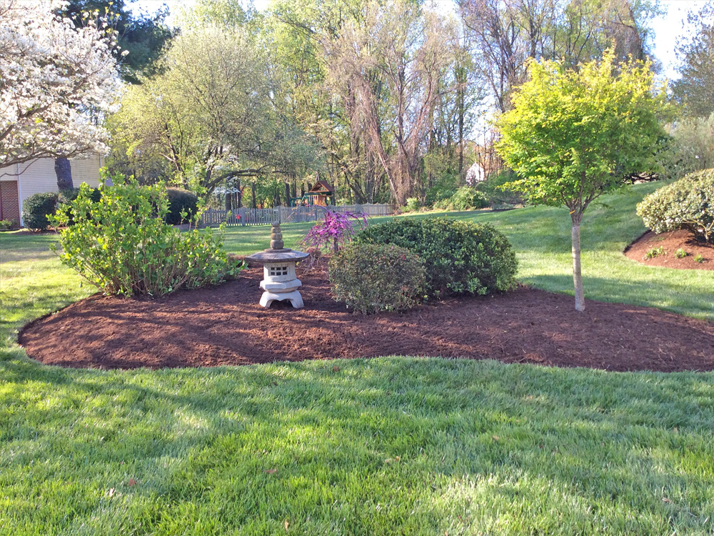 clean up and mulch back yard with edging and landscape design