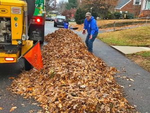 Leaf removal crew about to vacuum leaves