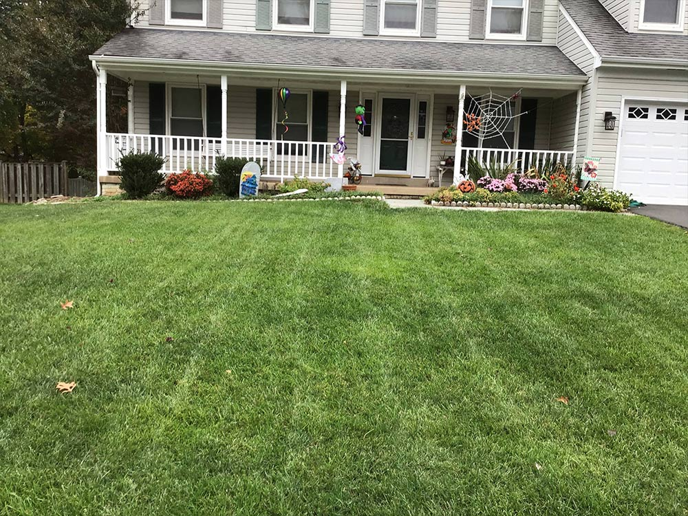 Lawn mowing in the fall