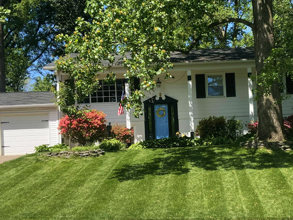 Carefree mowed lawn with strips
